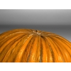 20 35 07 858 pumpkin 7 4