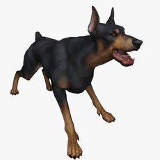 Doberman Animated 3D Model
