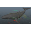 20 45 25 344 whale rig1 4