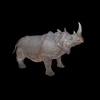 21 43 13 483 rhinoblackpic1 4