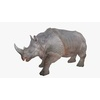 21 43 19 205 rhinoblendpic2 4