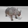 21 43 21 598 rhinohdpic1 4