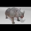 21 43 24 891 rhinohdpic2 4