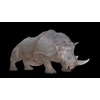 21 43 29 868 rhinoblackpic21 4