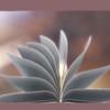 22 11 51 357 bookt 4.jpg973f612b 670d 4fdb b9f2 5b2cdc144881original 4