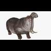 22 23 54 345 hippopotamusblendpic2 4