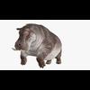 22 23 59 97 hippopotamusblendpic4 4