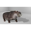 22 24 01 524 hippopotamushdpic1 4