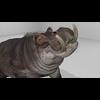 22 24 03 800 hippopotamushdpic3 4