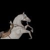 22 26 45 970 horseblackpic1 4
