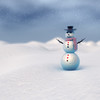 22 45 26 573 snowman 0000.jpg96a4e8ef f6c6 4e39 81e8 ba215c99c193original 4