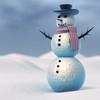 22 45 33 244 snowman 0004.jpg36514539 974a 44f4 93ea b0b39fbb8ba8original 4