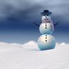 22 45 35 735 snowman 0007.jpg239df85f a8d1 4075 a359 8de4bc76609doriginal 4