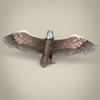 23 18 29 534 low poly realistic eagle 05 4