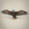 23 18 35 231 low poly realistic eagle 01 4
