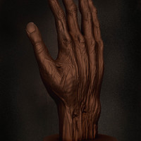 02 final render anatomy of hand by yacine brinis cover