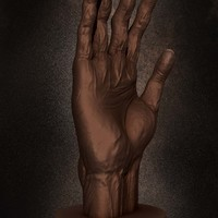04 final render anatomy of hand by yacine brinis cover