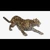 09 47 36 773 cheetahblendpic1 4