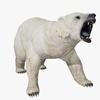 09 55 14 487 polarbeardisplaypic 4
