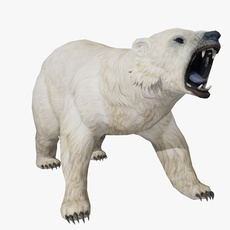 Polar Bear Animated 3D Model