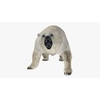 09 55 18 124 polarbearblendpic35 4
