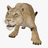 Female Lion Animated 3D Model