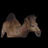 20 39 39 15 camelblackpic3 4