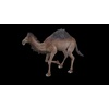 20 39 48 201 camelblackpic85 4