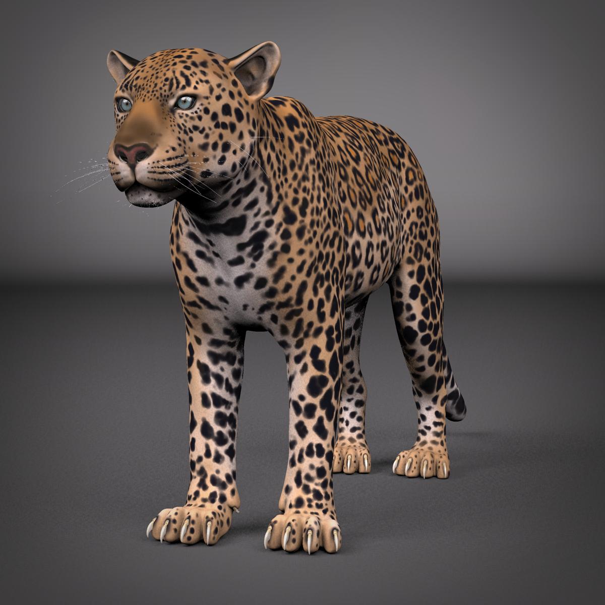 Leopard Maya Rig 3D Model