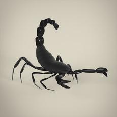 Scorpio 3D Model