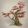 01 00 23 698 game ready maple tree collection 07 4