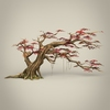 01 00 34 328 game ready maple tree collection 11 4