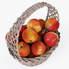 01 10 57 280 007 wicker basket04gr apples  4