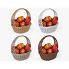 01 13 25 855 001 basket04 4color apples  4