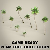 Game Ready Plam Tree Collection 3D Model