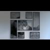11 18 42 526 lionscene 4