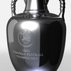 01 31 31 14 uefa euro trophy 11 4