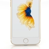 12 10 47 853 iphone 7 0002 gold 36  4