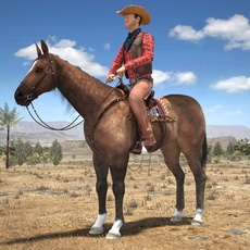Cowboy on the Horse 3D Model