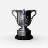 11 11 53 632 league cup trophy 05 4