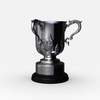 11 11 55 385 league cup trophy 07 4