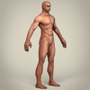 10 15 07 115 game ready realistic man 06 4
