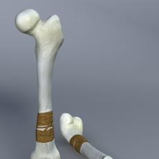 Bone Club 3D Model