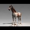 10 28 14 754 002 horsepinto14 4