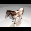 10 28 17 245 004 horsepinto14 4