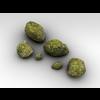 10 28 21 863 001 rocks0mossy 4