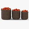 10 53 03 146 005 basket07 walnut brown apples  4
