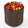 10 53 05 566 007 basket07 walnut brown apples  4