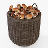 10 54 10 782 008 basket07 walnut brown mushrooms  4