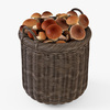 10 54 11 753 009 basket07 walnut brown mushrooms  4